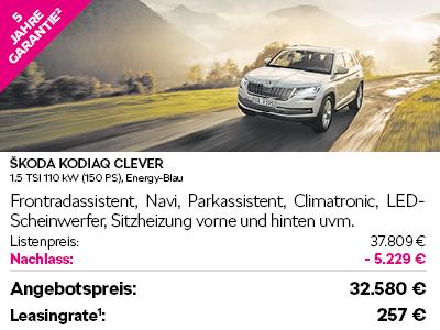 Skoda Clever Angebote5